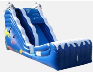 Inflatable Pool Slide/ Inflatable Water Slide Jw0522 pictures & photos