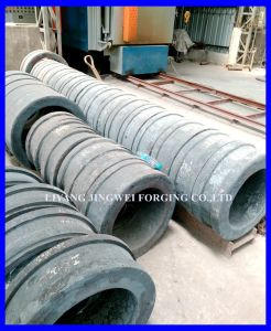 Feed Machine Accessories Forging Feed Pellet Press Die pictures & photos