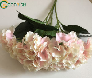 High Quality Hydragea Bouquet pictures & photos