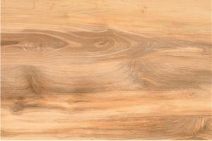 Ceramic Wood Look Rustic Flooring Tile (HP96014)