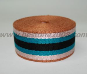 China Factory High Quality Rayon Webbing Tape#1501-64c pictures & photos