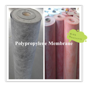 Polymer PP and PE Waterproof Membrane for Construction Waterproofing System pictures & photos