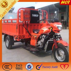 New Three Wheel Gas Motored Motorcycle for Heavy Work pictures & photos