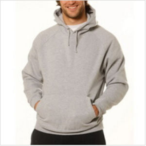 Custom Nice Cotton/Polyester Plain Hoodies Sweatshirt of Fleece Terry (F062) pictures & photos