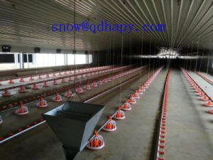 Ec Friendly Chicken Farm Equipment with Free Design for Sale pictures & photos