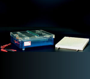 Med-L- Dycp-37b Isoelectric Focusing Electrophoresis Cell pictures & photos