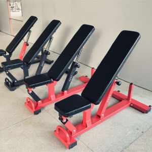 Home Gym Multi Function Adjustable Bench pictures & photos