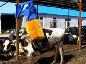 Powder Coated Cattle Automatic Body Brush pictures & photos