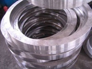 General Die Forging Steel Ring pictures & photos