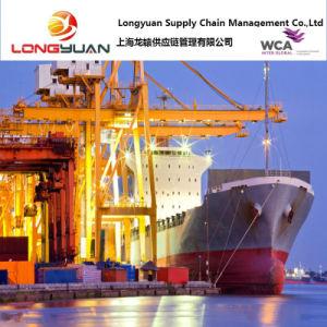 Logistics Service Sea Freight (Shanghai to LUANDA, Angola)
