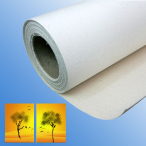 Cotton Canvas for Eco Solvent Printing pictures & photos