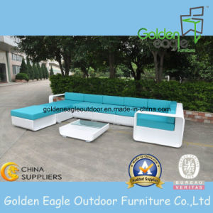 New Hand-Weaving Furniture Set Outdoor Patio Sofa (S0158)