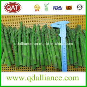 IQF Frozen Green Asparagus pictures & photos