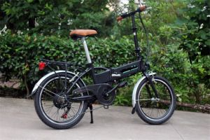 250W Brushless Motor Foldable Ebike/Electric Bike pictures & photos