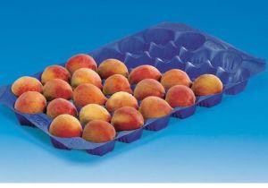 Different Color 29X39cm/29X49cm/39X59cm Plastic Fresh Produce Tray pictures & photos