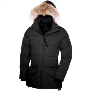 Woman Down Parka (E209)