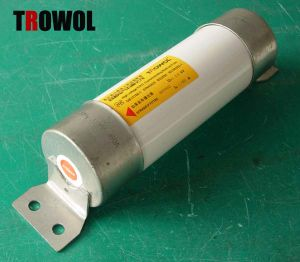 WFNHO High Voltage Fuse (BS type)