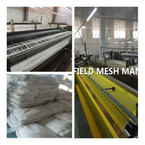 Low Elongation Polyester Mesh Fabric pictures & photos