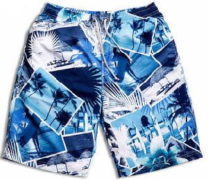 2015 Men′s Beach Leisure 100%Polyester Shorts pictures & photos