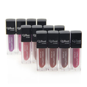 Qi Best 12 Color Liquid Lip Stick Comfortable Soft Does Not Fade Waterproof Matte Lipstick pictures & photos