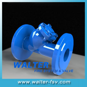 Double Flange Y Strainer ANSI125 pictures & photos