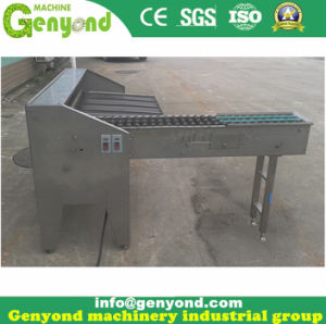 Full Automatic Egg Grading Machine pictures & photos