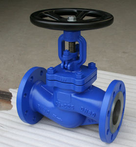 Leading Manufacturer of Globe Valve