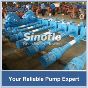 Line Shaft Overhung Vertical Turbine Spindle Trash Pump pictures & photos