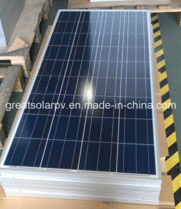 100W Poly Solar Panel with Favorable Price From China pictures & photos