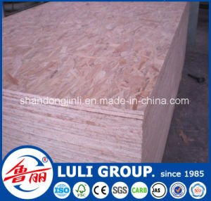 Pine Oriented Strand Board, Fir OSB3 pictures & photos