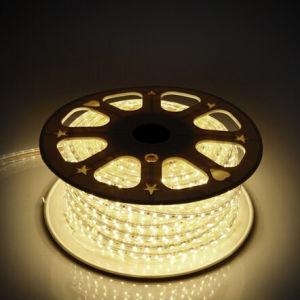 High Brightness 16-18lm/LED 30LEDs/M DC12V 5050 Flexible LED Strip (G-SMD5050-30-12V-1618) pictures & photos