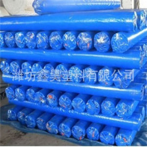 PE Tarpaulin in Roll Blue PE Tarpaulin for Tent Waterproof pictures & photos