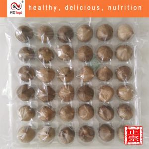 Black Garlic Extract From Fermented Garlic Food Grade Chinese Organic Superior Quality Good Price pictures & photos