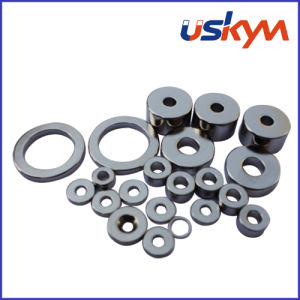 Sintered Ring NdFeB Magnets (R-007) pictures & photos