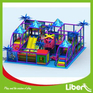 Sea Theme Indoor Playground with Professional Design Team pictures & photos