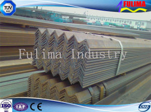 Hot Rolled Steel Angle Bar (FLM-AN-005) pictures & photos