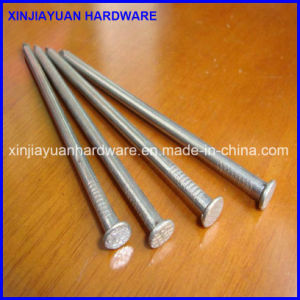 Polished Common Nail, Common Iron Wire Nail with Best Quality pictures & photos