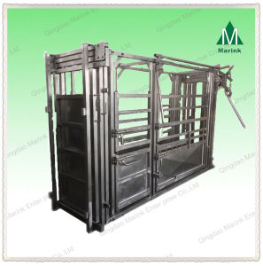 Powder Coated or HDG Cattle Squeeze Chute pictures & photos