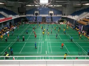 Bwf Certificate High Quality PVC Sports Flooring Used to Badminton Court 4.5mm pictures & photos