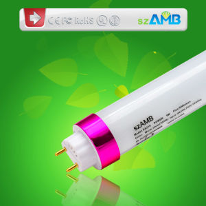 110lm/W LED Tube Light with High Quality Isolated-Driver (Inner or Outer Fixed)