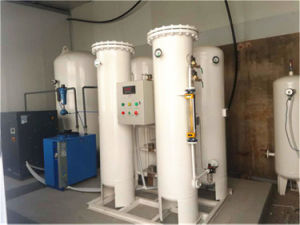 Gas Psa Nitrogen Generator with CE Approval China OEM Manufacture