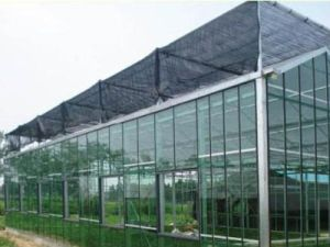 Inside Shading System of Agricultural and Commercial Greenhouse pictures & photos