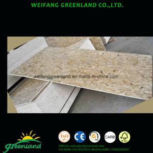 Good Quality OSB Board Oriented Stand Board) pictures & photos
