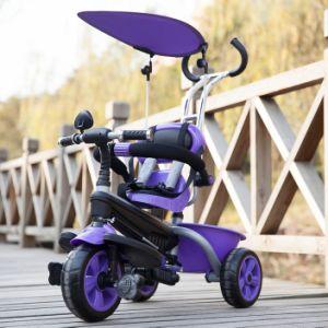Children Tricycle (KR02B)