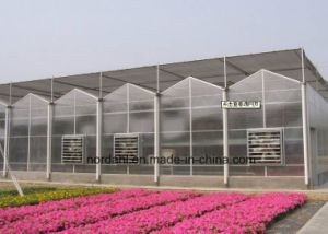 Venlo Polycarbonate Sheet Greenhouse pictures & photos