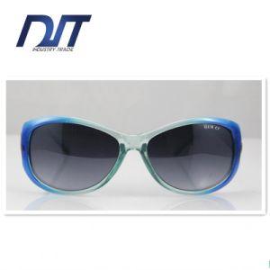 Colorful Nice Good Quality Lady Polarized Dropshipper Sunglasses