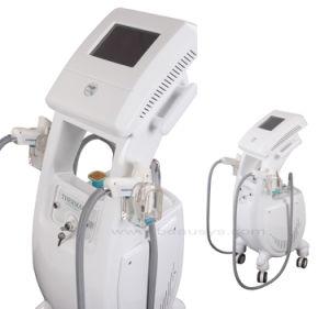 Skin Rejuvenation Machine / Fractional RF Beauty Equipment (Bs7200)