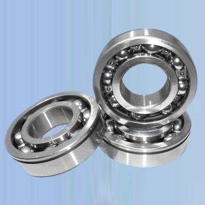 Chrome Steel NSK 6404 Deep Groove Ball Bearings (6404)