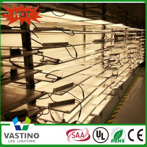 Austrilia Standard SAA Certification 600*600 LED Panel Light