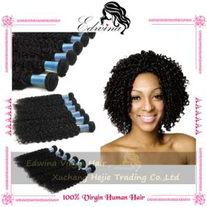 Unprocessed High Quality Malaysiuan Virgin Curly Wave Hair Human Hair Virgin Indian Hair Weave